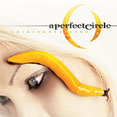 Thirteenth Step fra A Perfect Circle