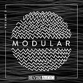 Modular, Vol. 2 by Various Artists