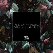 Variety Music Pres. Modulated Issue 1 by Various Artists