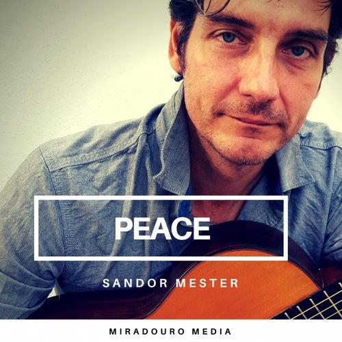 Peace by Sándor Mester