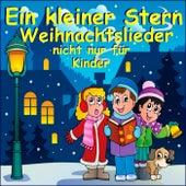 Ein kleiner Stern - Weihnachtslieder nicht nur für Kinder by Schmitti