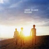 Reasons by Junior Delgado