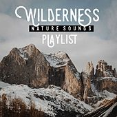Wilderness nature sound playlist by Various Artists