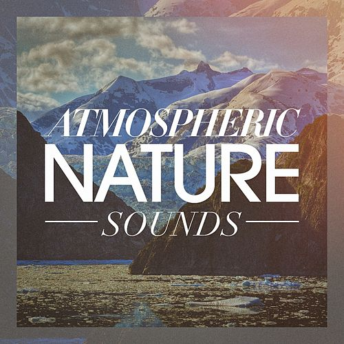 Atmospheric nature sounds by Echoes of Nature