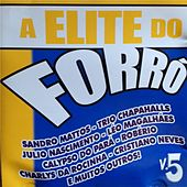 A Elite do Forró, Vol. 5 de Various Artists