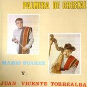 Palmera de Cristal by Mario Suarez