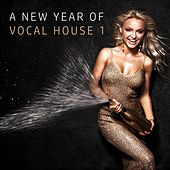 A New Year of Vocal House, Vol. 1 by Various Artists
