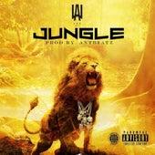 Jungle by Lau