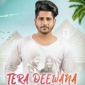 Tera Deewana by Parv