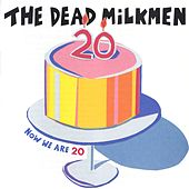 Now We Are 20 by The Dead Milkmen