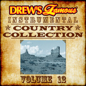 Drew's Famous Instrumental Country Collection, Vol. 12 by The Hit Crew(1)