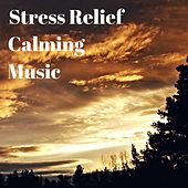 Stress Relief Calming Music - Songs for Babies and Adults by S.P.A