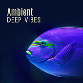 Ambient Deep Vibes by Top 40