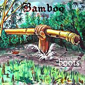 Bamboo Rising (Shakuhachi Unleashed, Vol. II) by Cornelius Boots