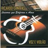 Voz e Violão by Ricardo Danttas