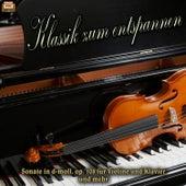 Klassik zum entspannen by Various Artists