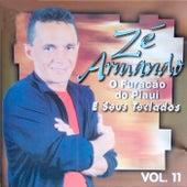 Vol. 11 by Zé Armando e Seus Teclados