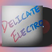 Delicate Electro by Various Artists