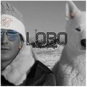 Lobo by Arce