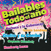 Bailables para Todo el Año de Various Artists