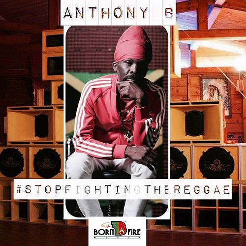 Stop Fighting The Reggae by Anthony B
