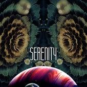Serenity by David J
