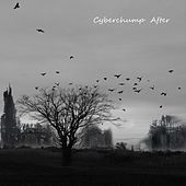 After by Cyberchump