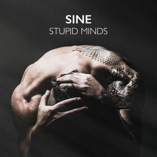 Stupid Minds by Sin e