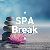 Spa Break - The 25 Best Luxury Spa Resorts Relaxing Songs with Nature Sounds, Piano and Asian Music von Best Relaxing SPA Music