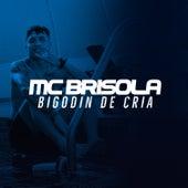 Bigodin de Cria de Mc Brisola