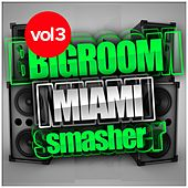 Bigroom Miami Smasher, Vol.3 - EP by Various Artists