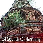 54 Sounds Of Harmony by Yoga Music