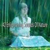 42 Enlightening Sounds Of Nature von Entspannungsmusik