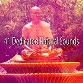 41 Dedicated Natural Sounds de Meditación Música Ambiente