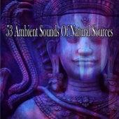 53 Ambient Sounds Of Natural Sources de Meditación Música Ambiente