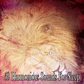 59 Harmonious Sounds For Sleep de White Noise Babies