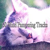 50 Mind Pampering Tracks by S.P.A