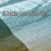 60 Relaxing Sounds From Nature de White Noise Babies