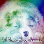54 Heavy Sleep Sounds by Deep Sleep Relaxation