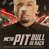 Pitbull de Raça de Mc Th