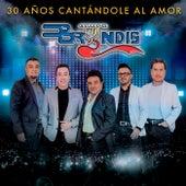 30 Años Cantándole Al Amor (En Vivo) de Grupo Bryndis