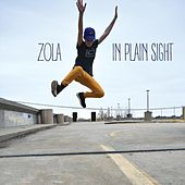 In Plain Sight by Zola