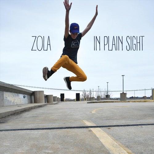 In Plain Sight by Zola