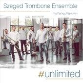 #Unlimited by Szeged Trombone Ensemble