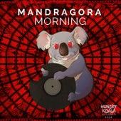 Morning de Mandra Gora