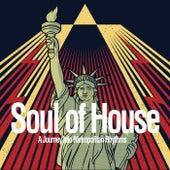 Soul of House (A Journey into Metropolitan Rhythms) de Various Artists