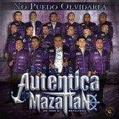No Puedo Olvidarla de Banda la Auténtica de Mazatlán