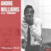 Christmas Wish de Andre Williams