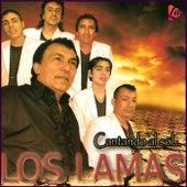 Cantando al Sol de Los Lamas