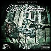 The Blessings, Vol. 2 (Bigbob Presents) de Various Artists
